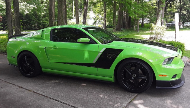 Rick & Paula's 2013 Gotta Have It Green Mustang (MVM #864 & 865)